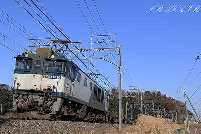 EF64-1020