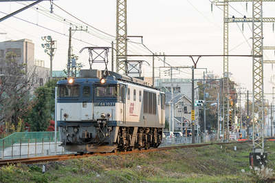 EF64-1037