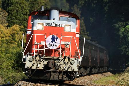 DD51-1043