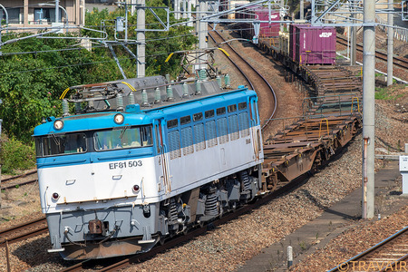 EF81-503